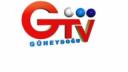Güneydoğu TV Logo