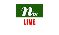 NTV Live Logo